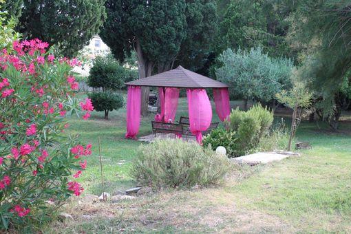 hotel-arles-jardin-garden (2)